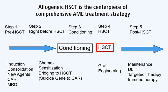 The new paradigm of acute myelogenous leukemia (AML) treatment, illustrating the importance of post-transplantation maintenance therapy following hematopoietic stem cell transplantation (HSCT).